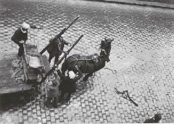 Cheval, Paris