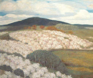 Orchards in blossom