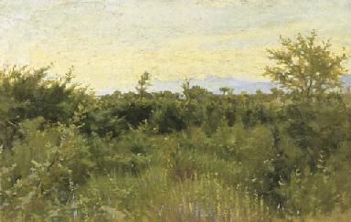 Bosco a Fauglia, 1892