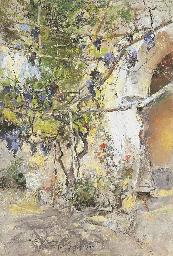 Angolo di giardino a Capri