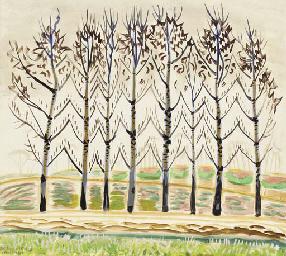 Trees Dancing in April Sunligh