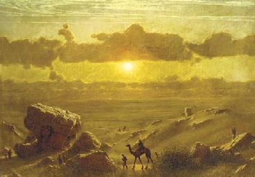 Camel trail in evening sunligh
