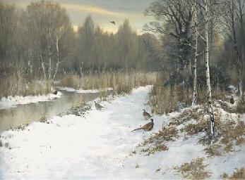 Winter in a Norfolk Fen