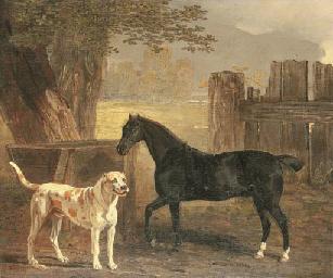 Sancho, a bay pony, with Cato