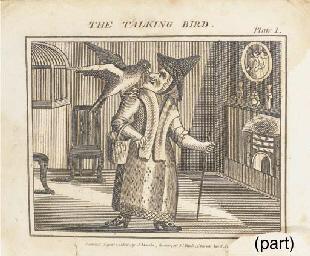 The Talking Bird: or, Dame Tru