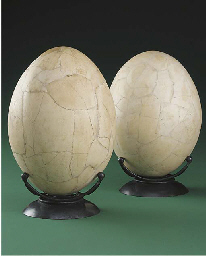 A reconstructed egg of the mad