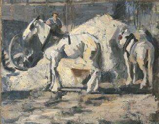Weisse Pferde, um 1891/92