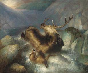 Deer and deerhounds in a mount