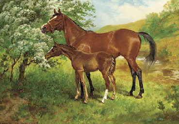 A mare and foal in an orchard
