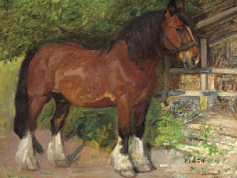 Punch, a shirehorse