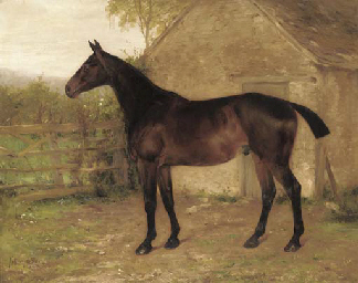 A liver chestnut hunter in a s