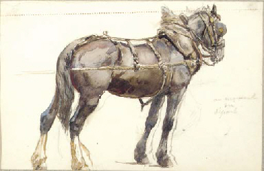 Study of shire horse; and Stud