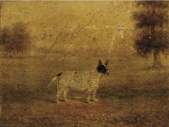 A terrier in a landscape