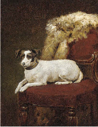 A Jack Russell on a chair