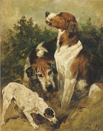 Hounds and a terrier