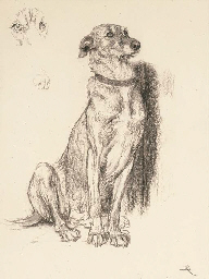 Study for the dog in 'Requiesc