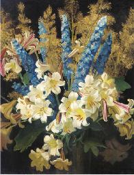 Lilium, delphinium and boccani