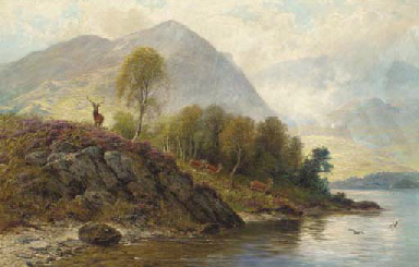 A stag with hinds by a loch