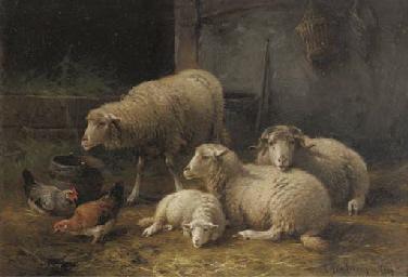 Intérieur d'étable avec mouton