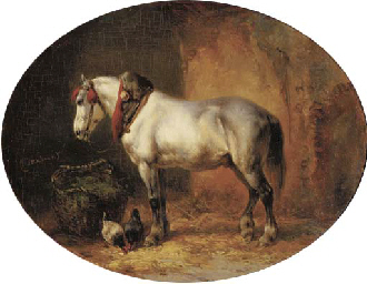 A grey in a stable