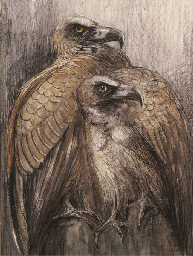 Two bearded vultures