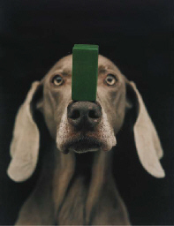 (Green Block) on the Nose