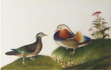 Four ricepaper paintings, 19th