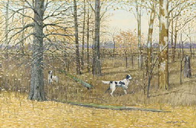 English Setters in a wood
