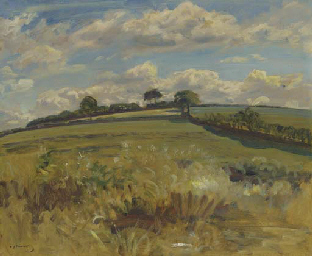 Withypool landscape, Exmoor