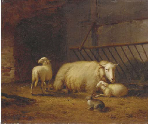 Sheeps and a Rabbit in a Stabl