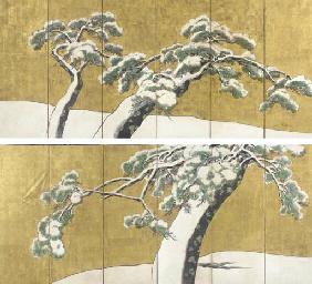 Pine trees in snow,