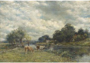Cattle watering in a river lan