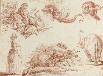 Sketches of animals and a woma