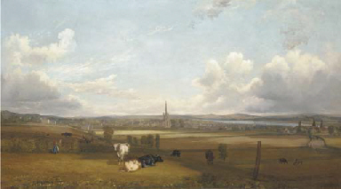View of Alloa, with cows and f