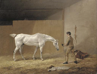 A grey hunter and stableboy