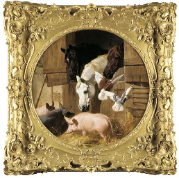 Three horses at a stable door