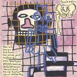Notes to Basquiat: Female Pelv