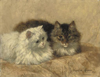 Two Resting Cats