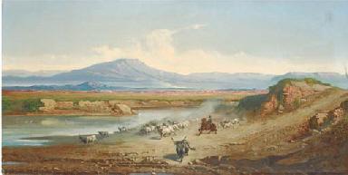 Herding Buffalo in the Roman c