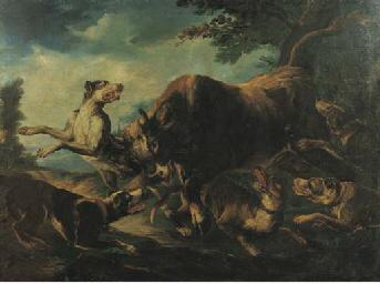 Toro aggredito da cani