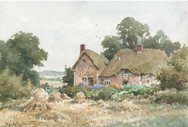 Thatched cottages by a hayfiel
