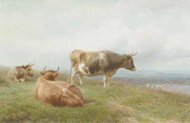 Cattle and sheep resting on a