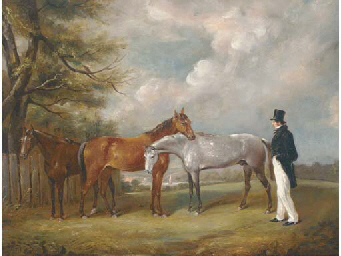 A gentleman with three horses