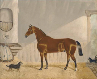 A chestnut hunter in a stable