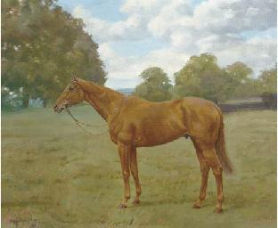 Rose Park, a chestnut racehors