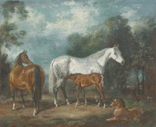 Mares and foals in a paddock