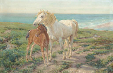 A mare and foal on a clifftop