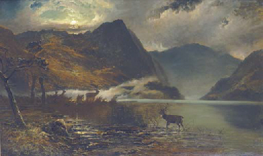 Stags watering by a moonlit lo