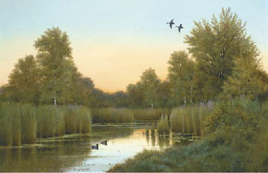 Evening, the river Thurn