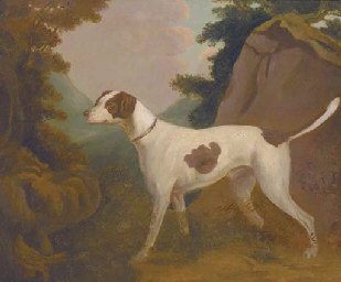 A foxhound in a landscape
